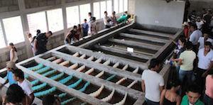 AguaClara Water Treatment System