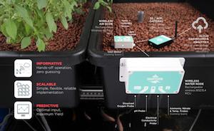 Aquaponics Sensor System