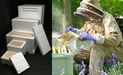 Eco Hive